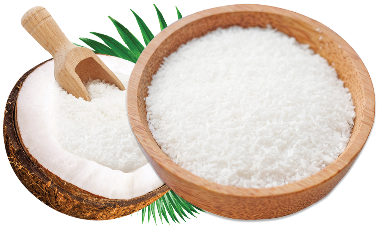 desiccated coconut supplier