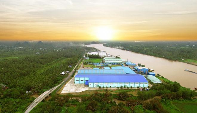 Cơm dừa Bến Tre ép trực tiếp tại nhà máy Thành Thành Công của Betrimex với công nghệ ép lạnh tiên tiến hàng đầu thế giới hiện nay